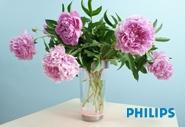 Удивительная ваза для цветов Philips Lumiware